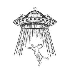 ufo steals cat sketch vector image