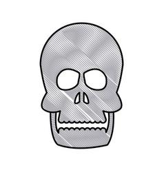 drawing human skull bone care healthy vector image vector image