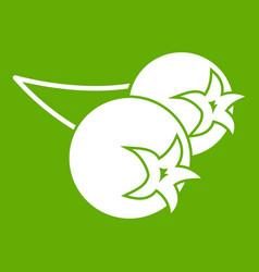 Chokeberry or aronia berry icon green vector