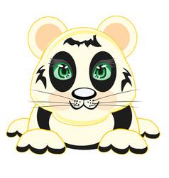 drawing animal panda vector image