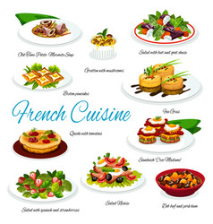 French cuisine salads foie gras soup and quiche vector