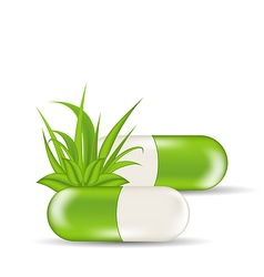 Natural medical pills with green leaves and grass vector