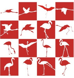 Red and white background with flamingos vector