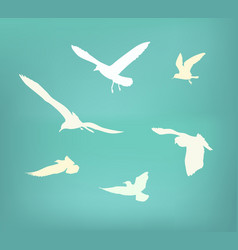 seagull flying silhouette vector image vector image