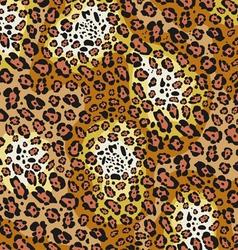 skin pattern of leopard vector image vector image