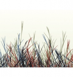 rough grass vector image vector image
