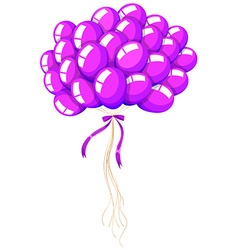 Bunch of purple balloons floating vector