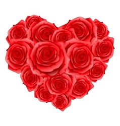 Heart of red realistic roses Happy Valentine day vector