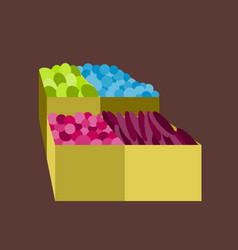 Icon in flat design vegetables and fruits vector