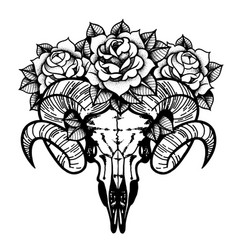 rose tattoo with skull of a sheep isolated vector image