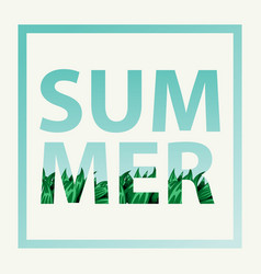 Summer frame with grass and blue sky summer text vector