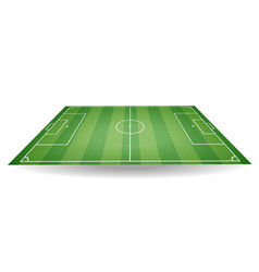 top and side view of football field textured socc vector image