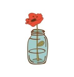 Beautiful poppy flower in glass jar vector image