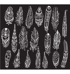 Set of white Feathers on black background vector image vector image