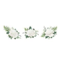 Floral bouquet set garden white powder peony vector
