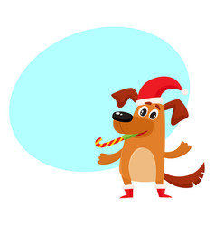 funny dog character in christmas hat and boots vector image