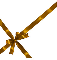 Golden realistic bow vector