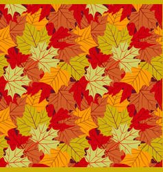 seamless pattern with leafs autumn leaf background vector image