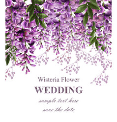 Wedding invitation card with wisteria flowers vector