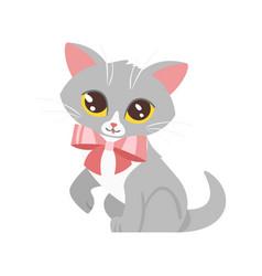 animal pet - cute cat vector image
