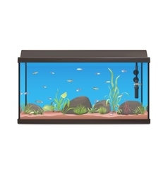 Aquarium with fishes stones and plants vector