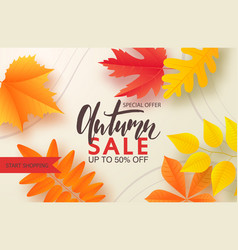 autumn sale background layout decorate with leaves vector image