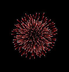 Beautiful red firework couple romantic salute vector