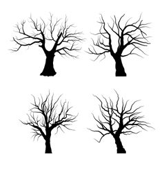 collection set trees silhouettes isolated vector image