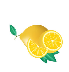 fruit icon lemon split white background ima vector image