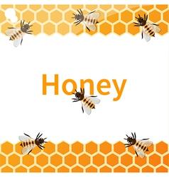 Honey vector image