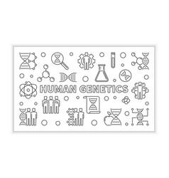 Human genetics minimal banner in outline vector