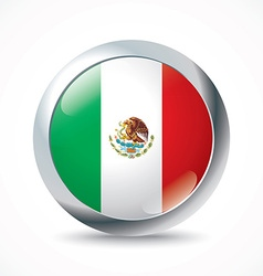 Mexico flag button vector image