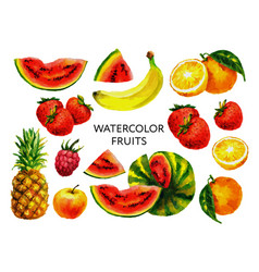 Set fruits in watercolor style isolated vector