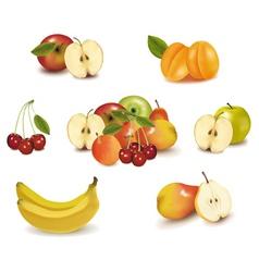 Big group of sweet fruit vector
