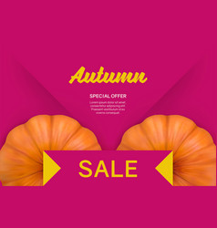 autumn sale bright pink background with pumpkin vector image