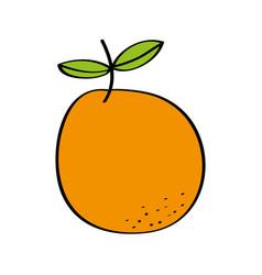 orange fresh fruit drawing icon vector image