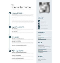 Professional personal resume cv in the light blue vector
