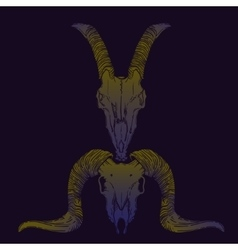 Ram and goat skull occult vector image
