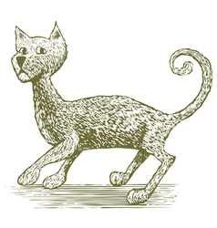 Woodcut Cat Drawing vector