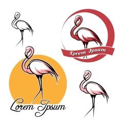 Flamingo set vector image