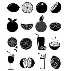 Lime lemon icons set vector image