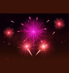 Bright festive colorful fireworks set vector