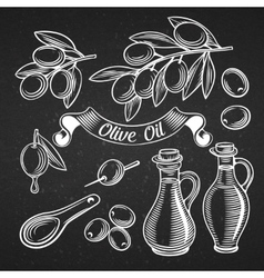 decorative olive set vector image