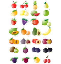 Different kinds of fresh fruits vector