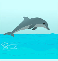 Dolphin diving vector