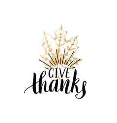 give thanks lettering maple leaf hand vector image