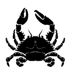 hand drawn crab seafood design element for logo vector image