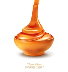 object - a bowl is filled with honey vector image