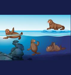 Ocean scene with four seals swimming vector