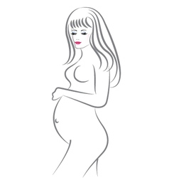 Pregnant beauty woman vector image